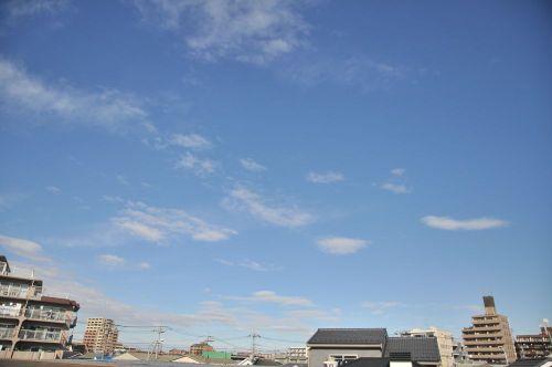 Sky11010101