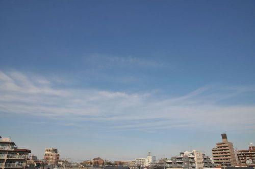 Sky11011101