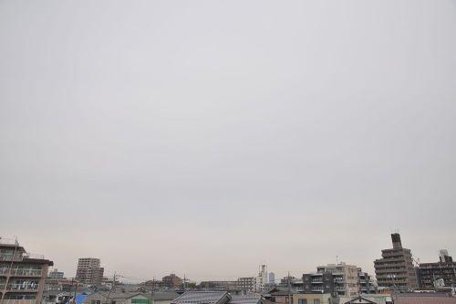 Sky11011501