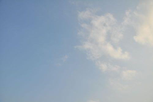Sky11012402