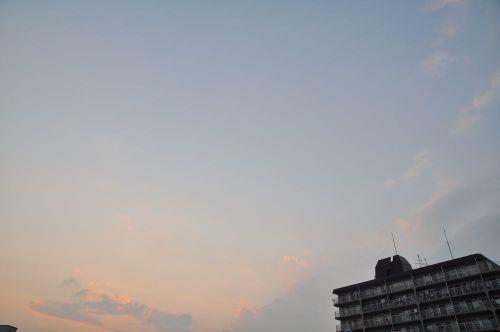 Sky11012403