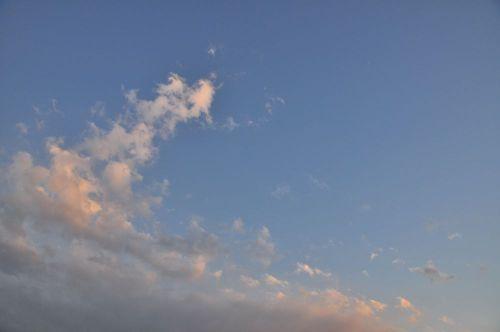 Sky11012602