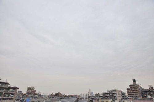 Sky11020201