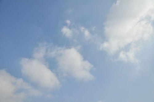 Sky11020902
