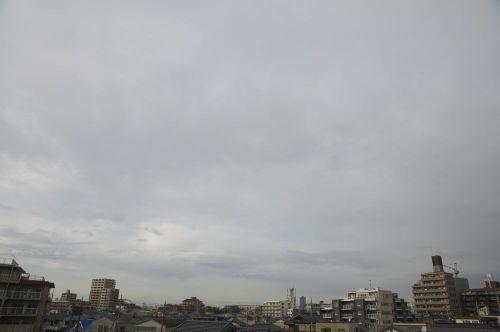 Sky11022401