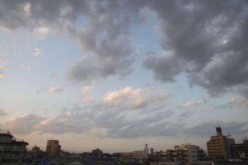Sky11022502