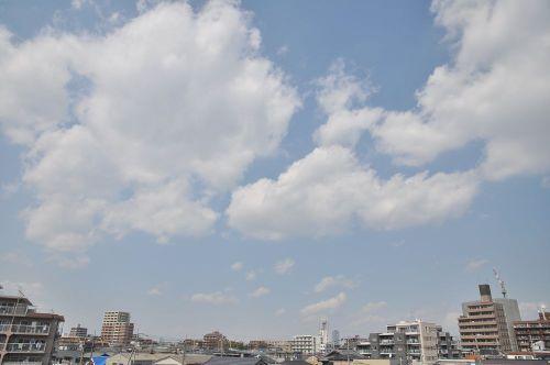 Sky11033101