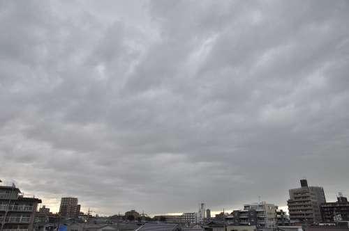Sky11053003