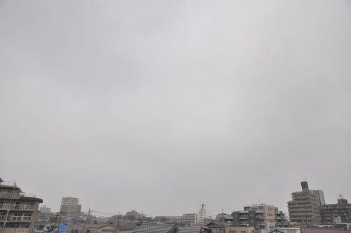 Sky11062701