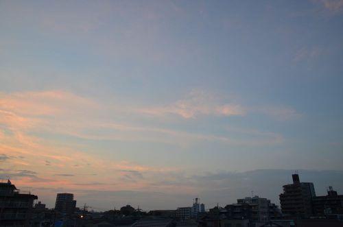Sky11063002