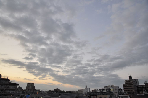 Sky11072102