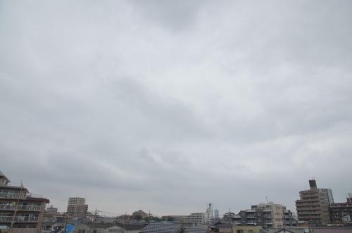 Sky11073101