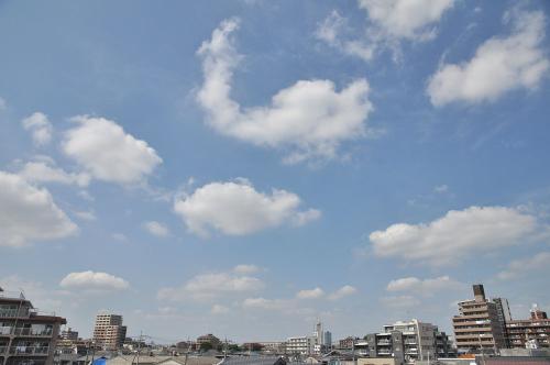 Sky11082901