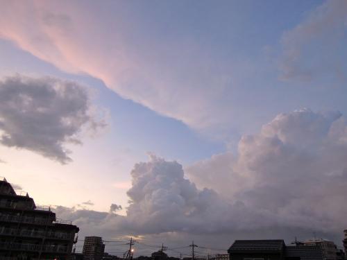 Sky11083101