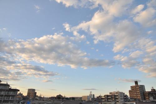 Sky11100301